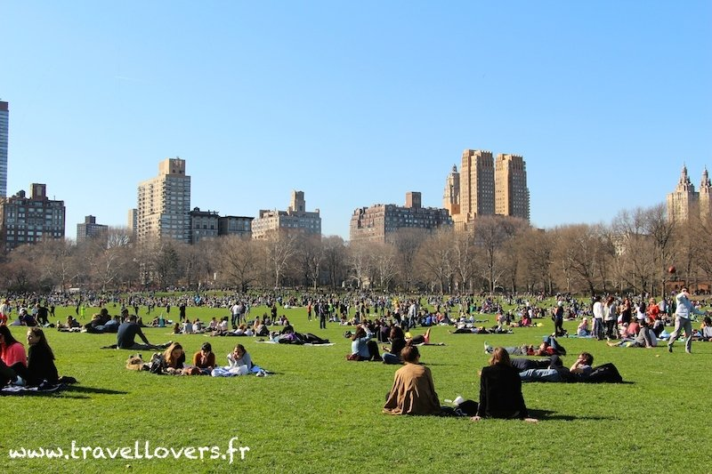 sheep-meadow-central-park