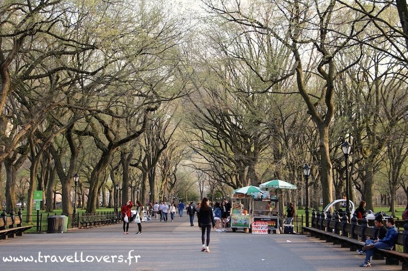 the-mall-central-park