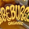 bareburger-new-york