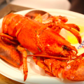 homard-lobster-place