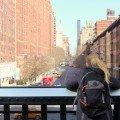 vue-high-line-new-york