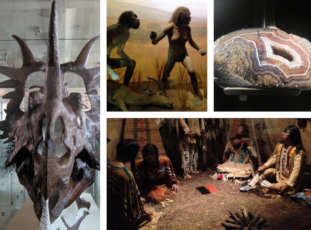 visite-musee-histoire-naturelle-new-york
